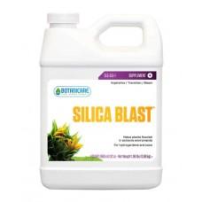 Silica Blast  1 qt