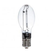 Bulb Sod for 150W Mini Sunburst