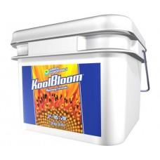 KoolBloom 16 lbs