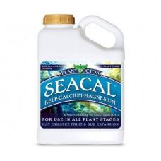 SPO SeaCal Gal